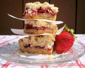 Terry Berries | Strawberry Crumble Bars
